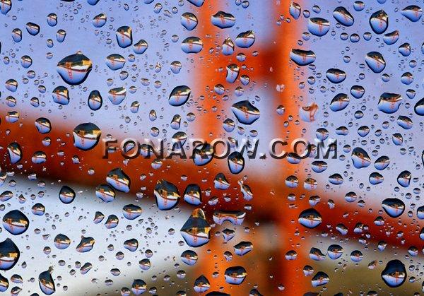 Raindrops, SF Copyright Craig Fonarow