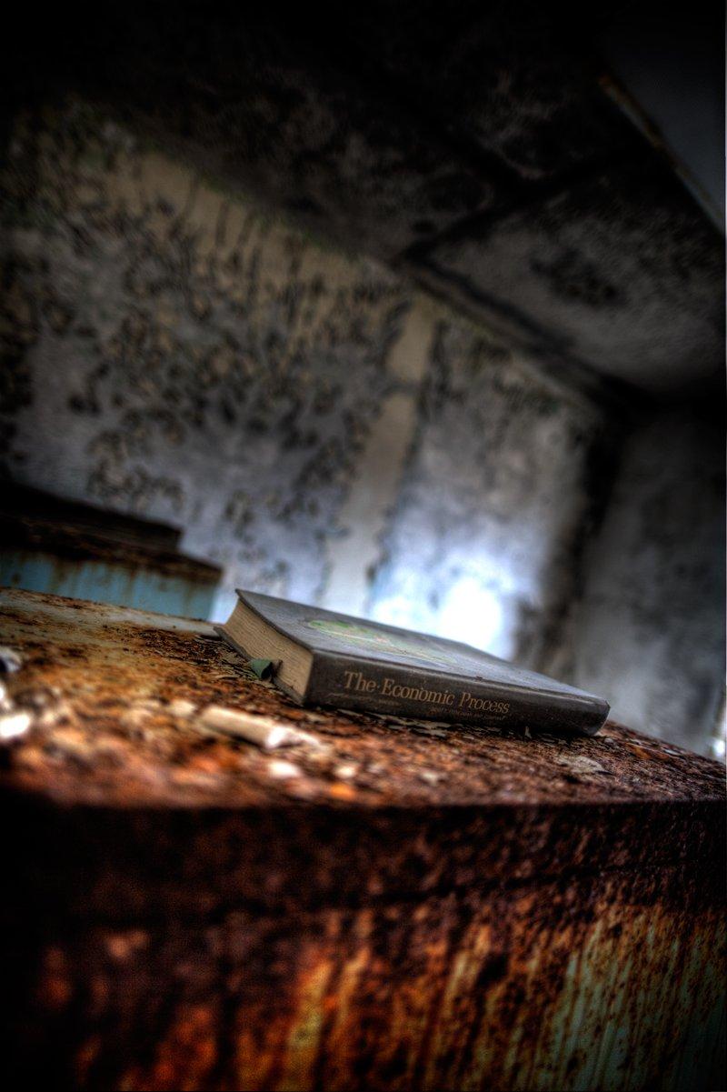 Eloise Insane Asylum: The Economic Process