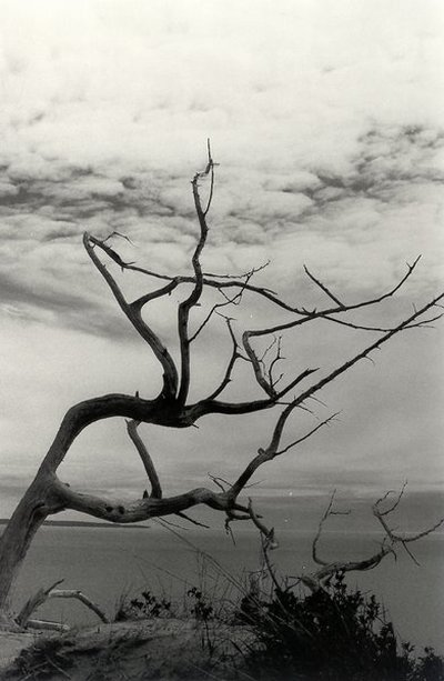 Sleeping Bear Dunes, 1998