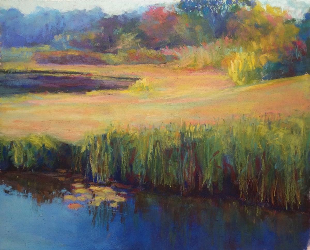 Springhill Bog