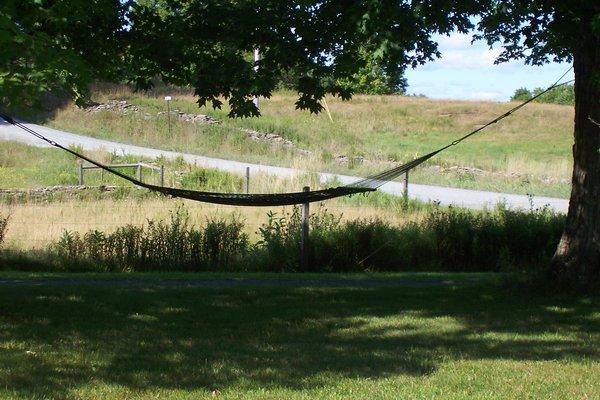 Hammock Beneath the Oak Tree